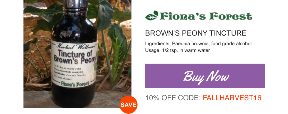 Brown's Peony Buy Now
