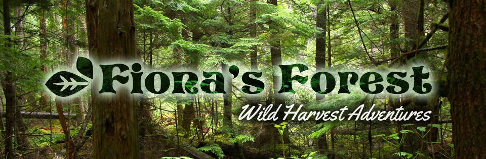 Fiona's Forest Wild Harvest Adventures
